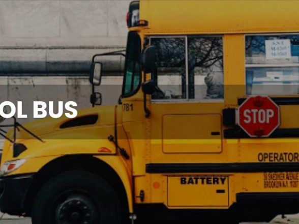 School Bus Fast Facts… spread the news